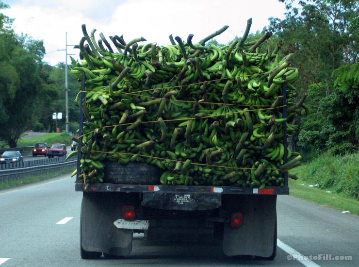 Puerto Rico Plantain Truck